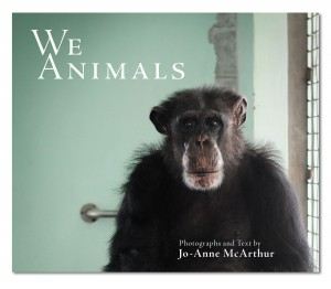 awe-animals-cover_web-resolution