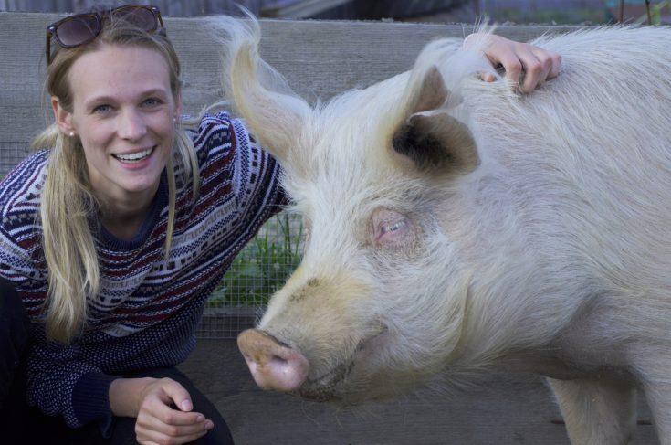 Foto Animal Equality